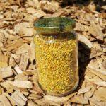 Pollen séché basse température 250g ou 500g