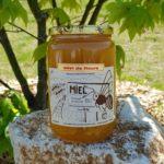 Miel de fleurs – 1kg