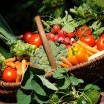 "Panier de légumes – ""Duo""(environ 3kg)"