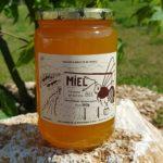 Miel de Pissenlit – 1 Kg