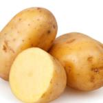 pomme de terre ronde